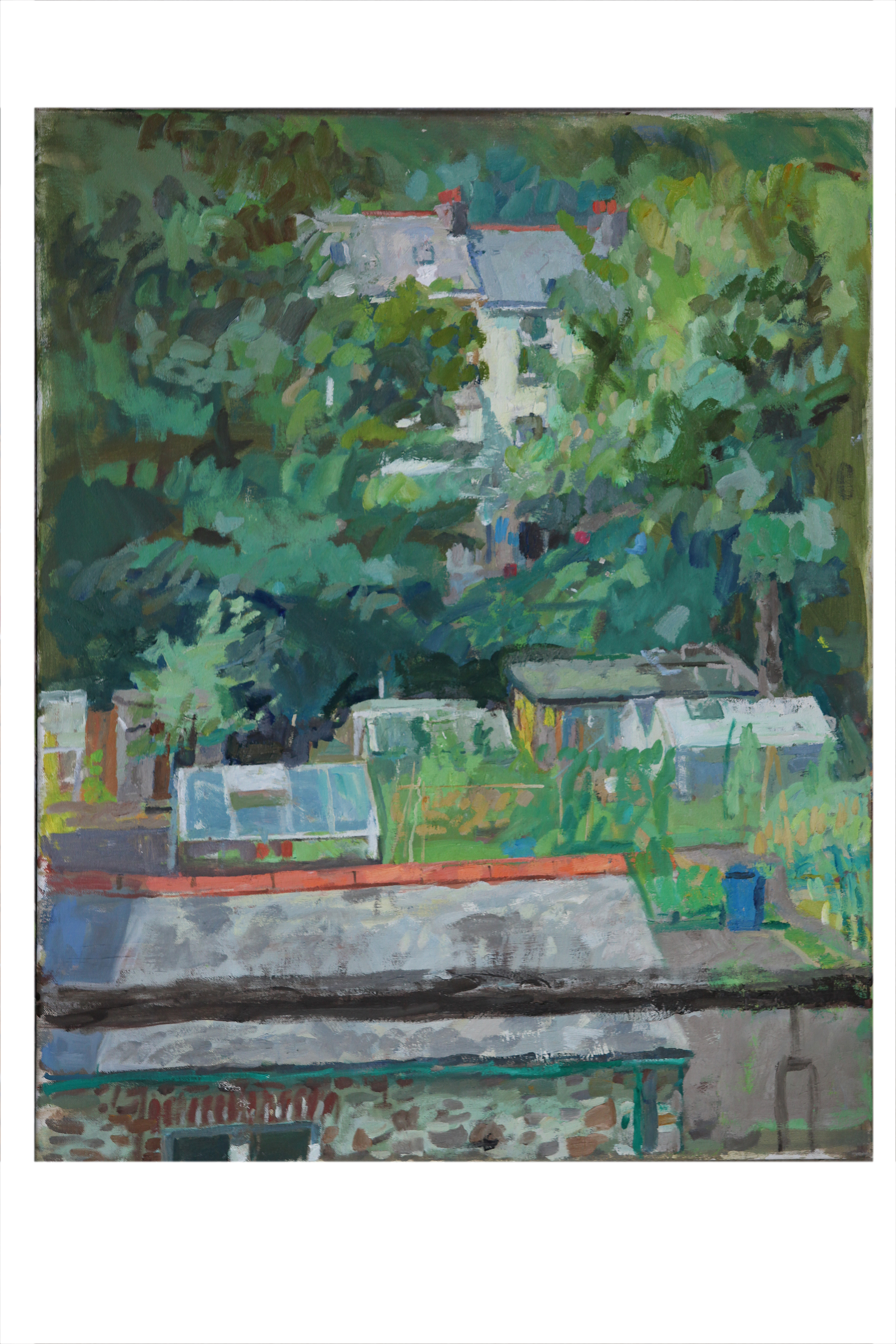 Across the allotments, summer,12-1pm_
