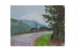 Road near barn,San Roque de Rio Miera