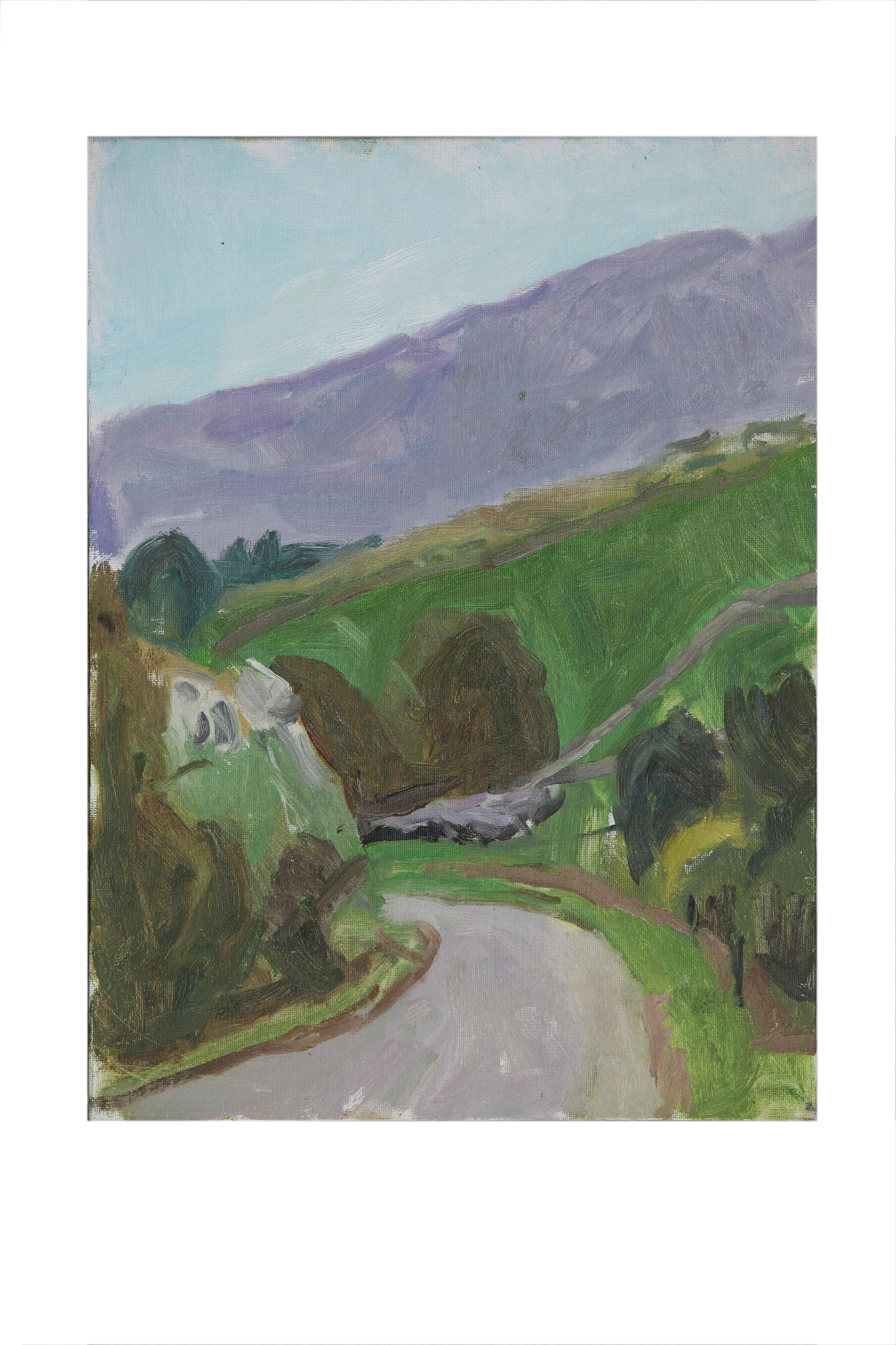 Road from Barn,San Roque de Rio Miera_
