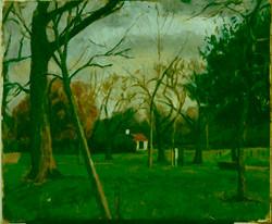 Trees and Pavilion  Victoria Park.