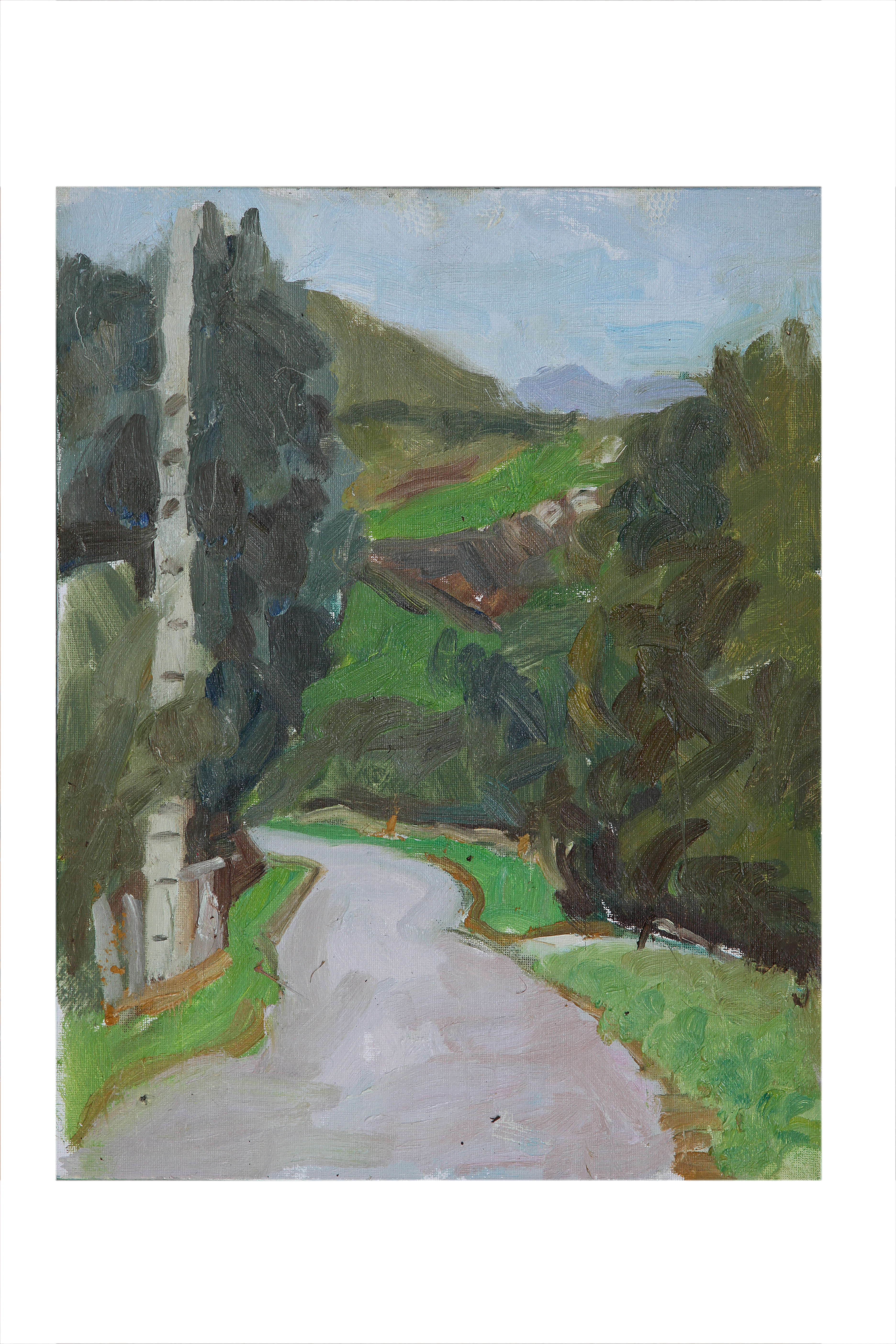 Road by San Roque de rio Miera, Cantabri