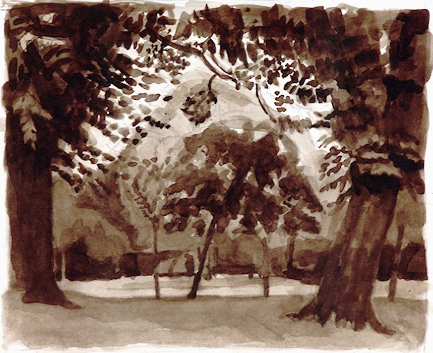 Watercolour on Paper. Victoria Park  Trees