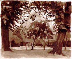 Trees Victoria Park London