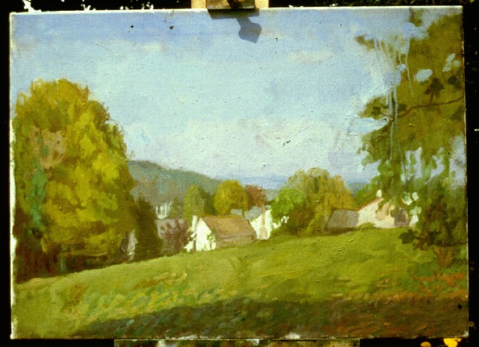 Oil on Canvas. Houses in Lease Park