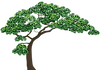 Just-Tree.png