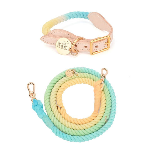 Cotton Candy Lead and Fixed Collar Set
