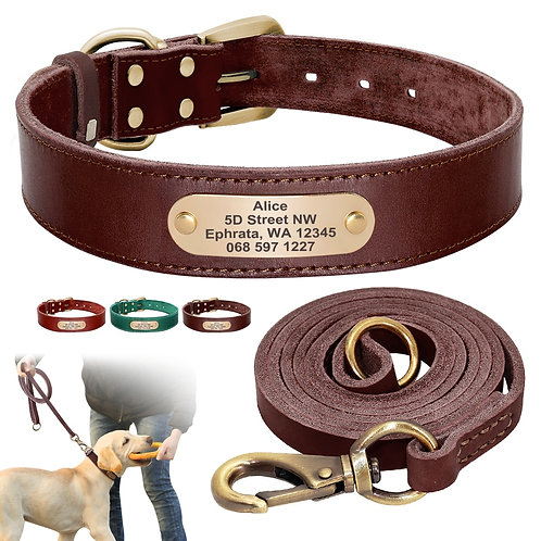 Personalized Genuine Leather Collar with Matching Lead