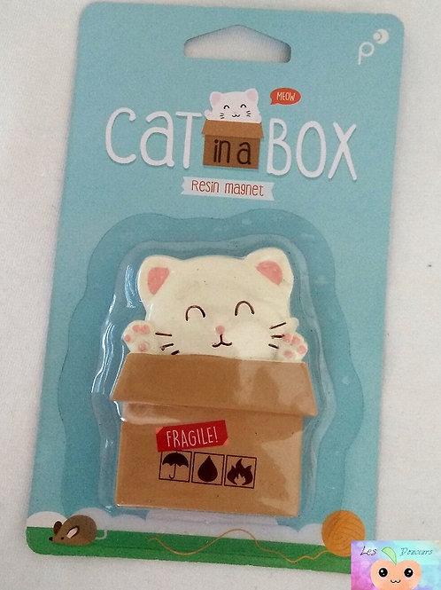 Aimant chaton dans son carton