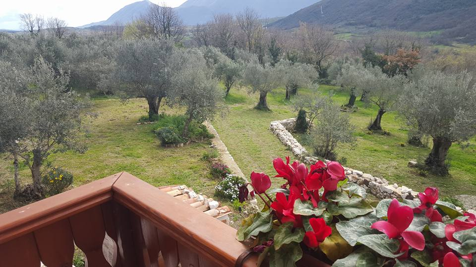panorama 2 baita fiorita