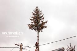 saratovskie arboristi alpinisti (24).jpg