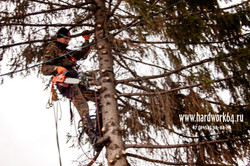 saratovskie arboristi alpinisti (8).jpg
