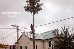 saratovskie arboristi alpinisti (23).jpg
