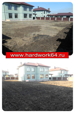collage_photocat16.jpg