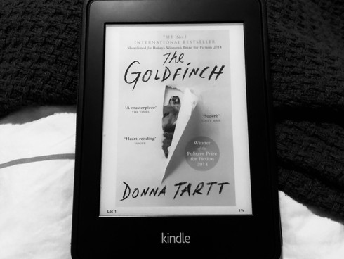 The Goldfinch by Donna Tartt | Book Review