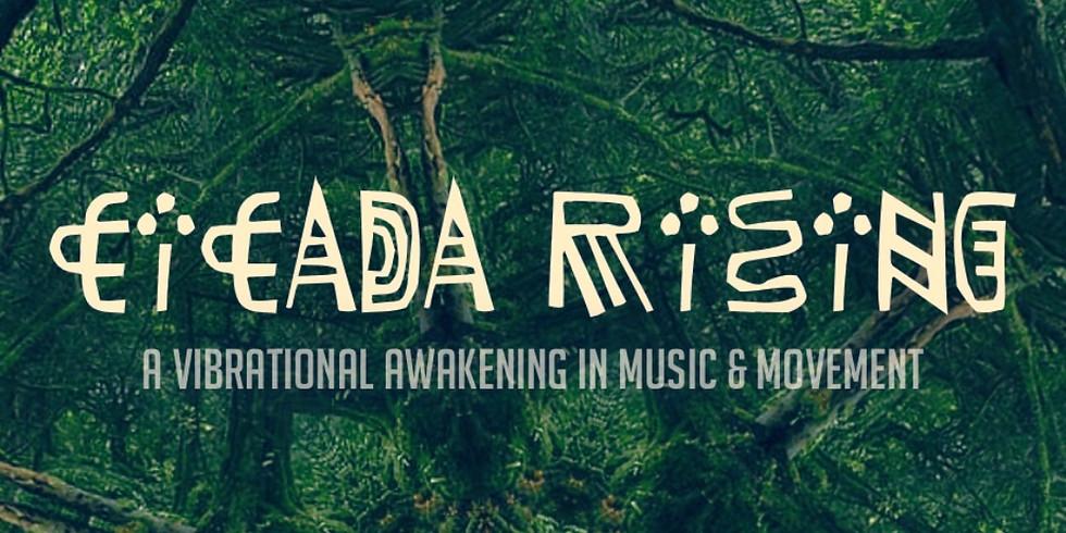 Cicada Rising