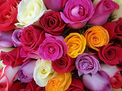 hermosas-exoticas-flores-rosas-rosales-d