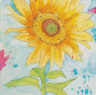 Lonely Sunflower.JPG