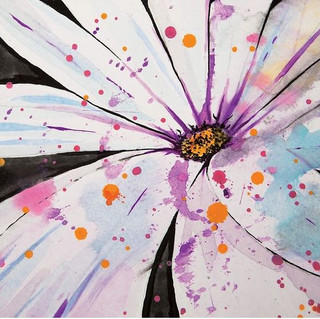 Spring-Splattered Daisy.JPG