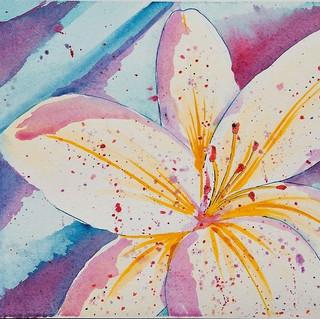 Love soiled petals.JPG