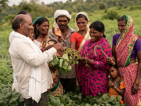 The un-realized  potential of Farmer Producer Organizations