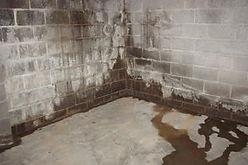 basement-mold-300x200.jpg