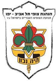 לוגו צופי תל אביב.jpg