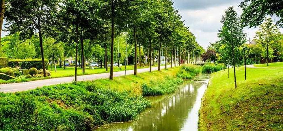 LandscapeImage.jpg