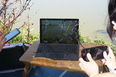 參加者作品於魚塘背景下化為動畫