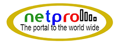 NetPro logo.png