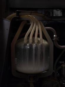 The Correspondent - Milk