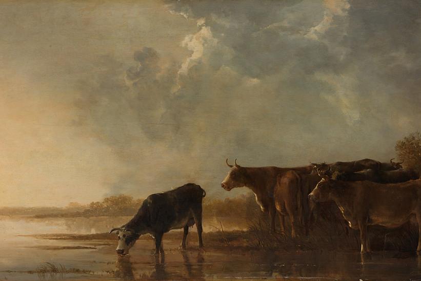 Rivierlandschap met koeien