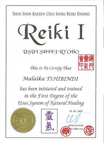 Diplome Reiki I.jpg