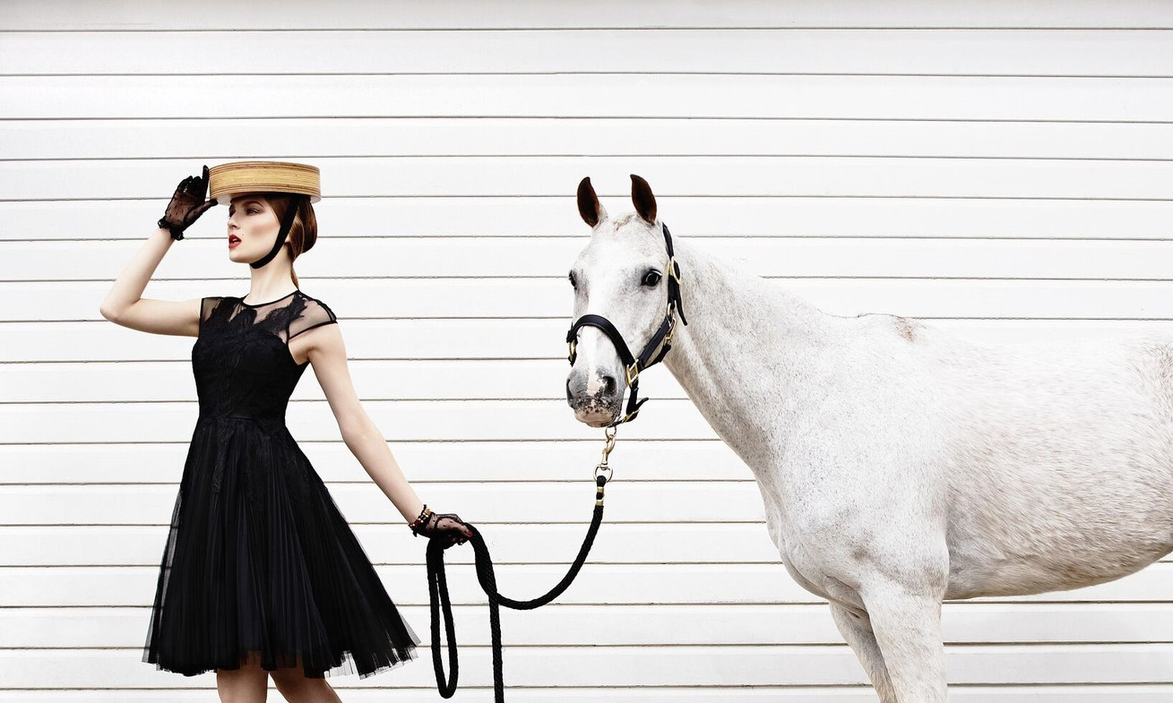 equestrian-style-white-horse-black-dress