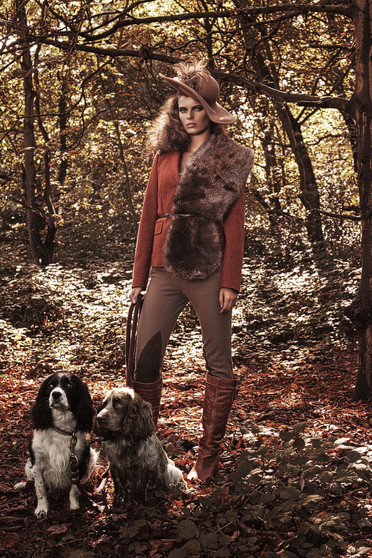 hunter-dogs-hunting-forest-richmond-park