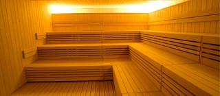 gaia-sauna