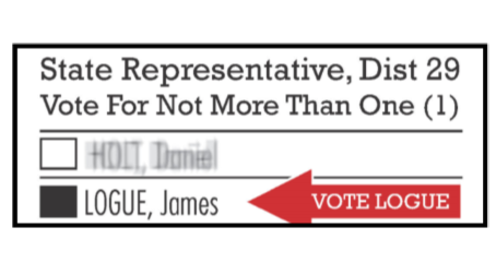 Primary Election: August 8th