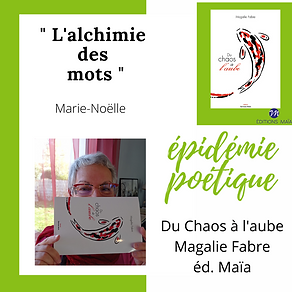 EpidémieMarie-Noëlle.png