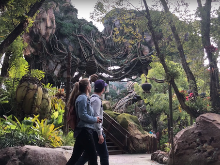 Le secret pour une visite réussie à Disneyworld
