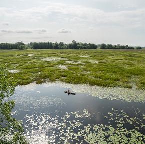 On a visité les Everglades du Québec! -  La région de Sorel-Tracy