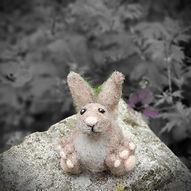 Furzie Hare 2 sm.jpg