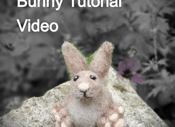 Bunny Video Only