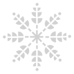 Intricate%20Snowflake_edited.png