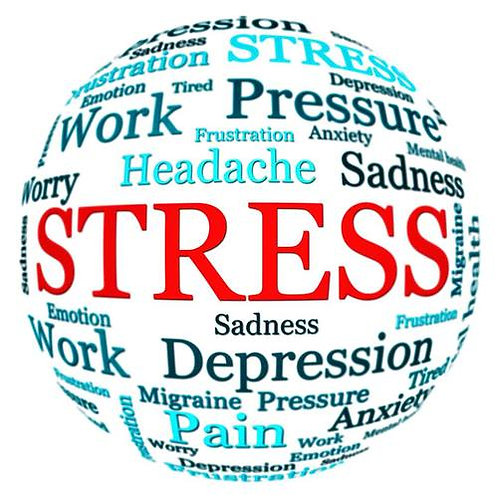 Stress Master Questionnaire