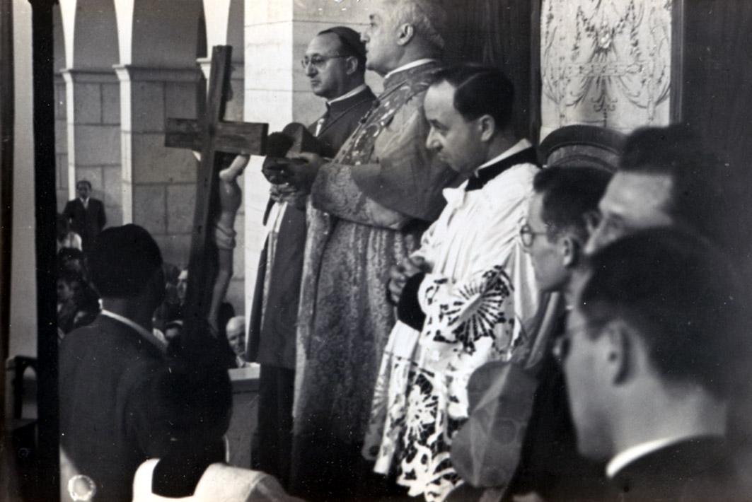 cardinale 5