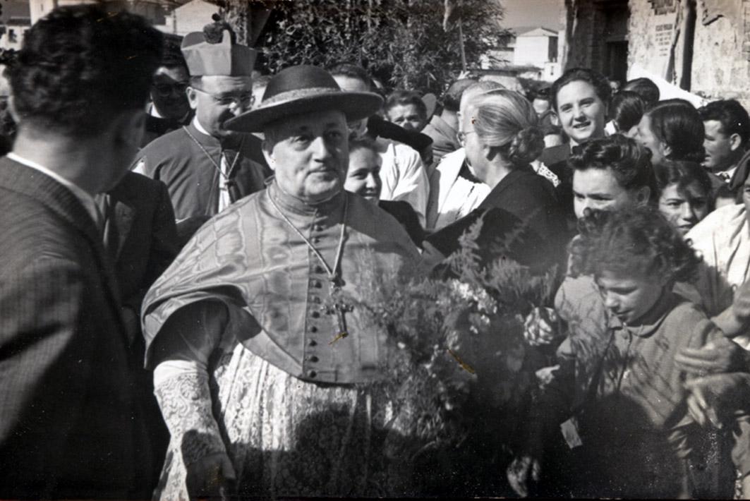 cardinale 6