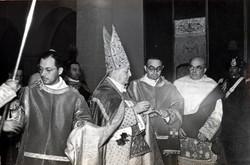 cardinale 4
