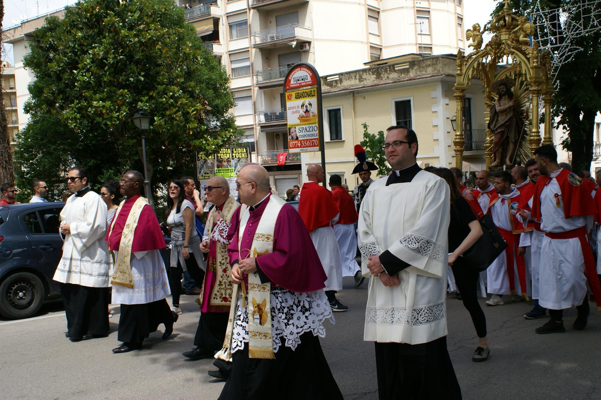 processione 223