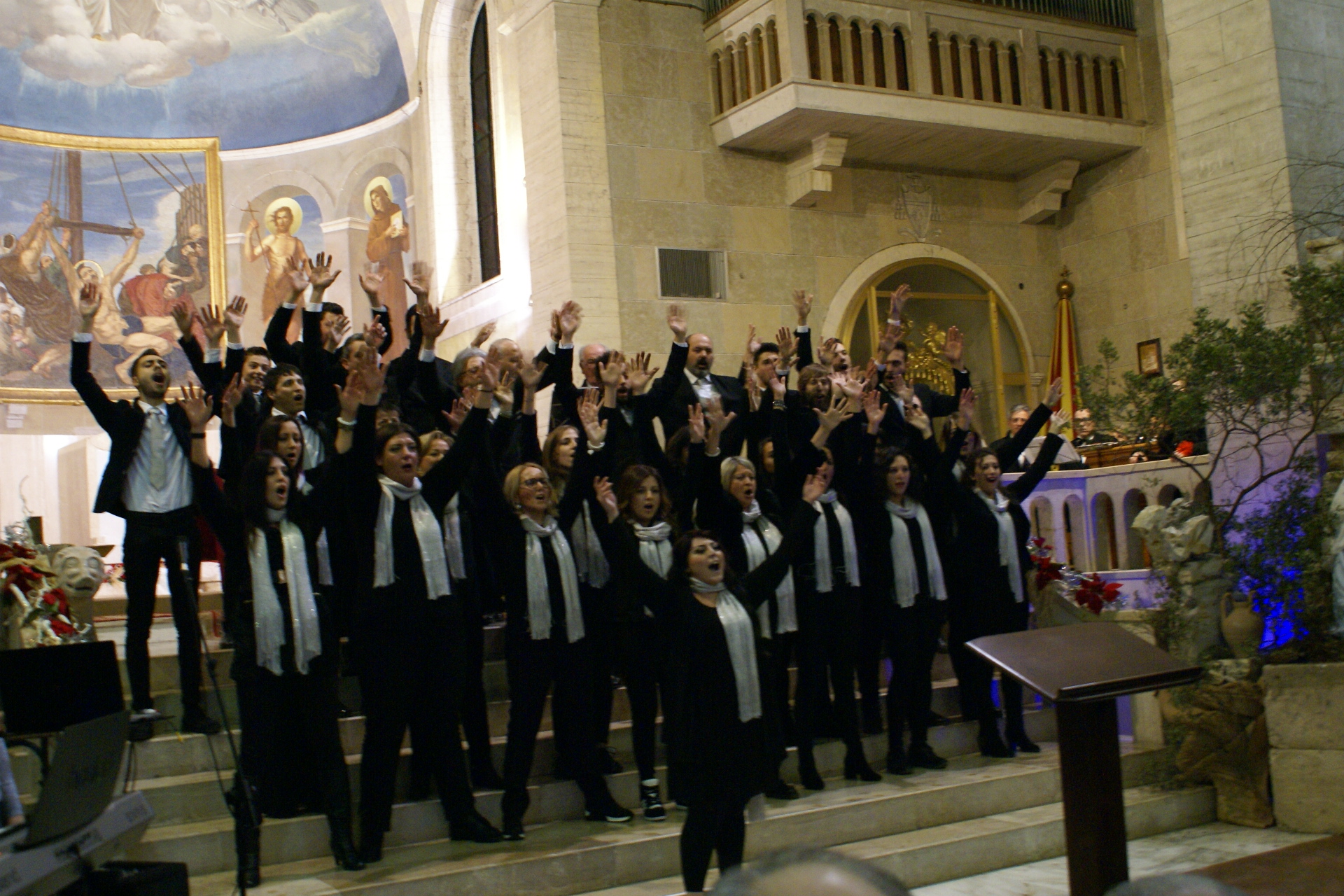 Artis Musicae Accademia - Cassino