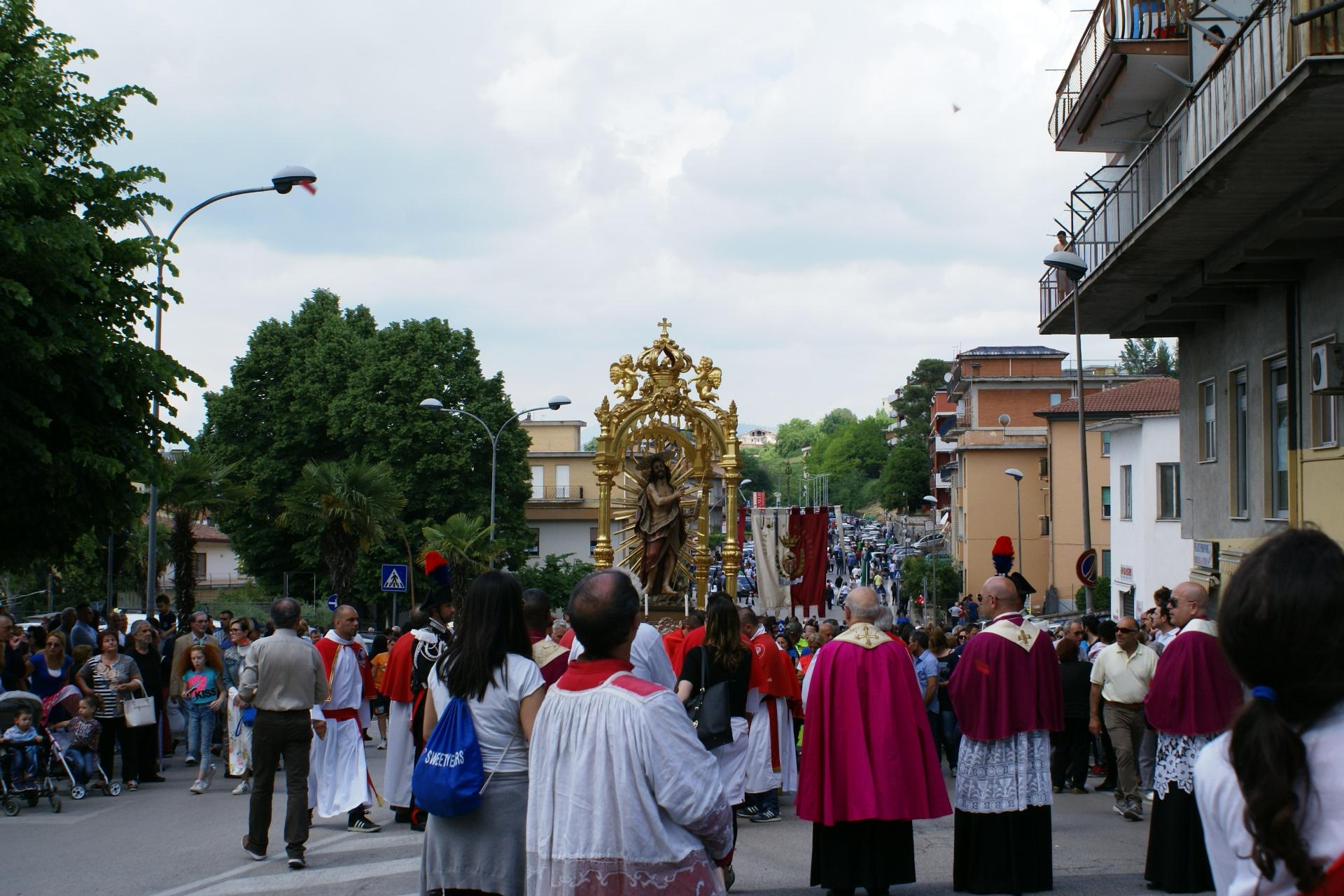 processione 215