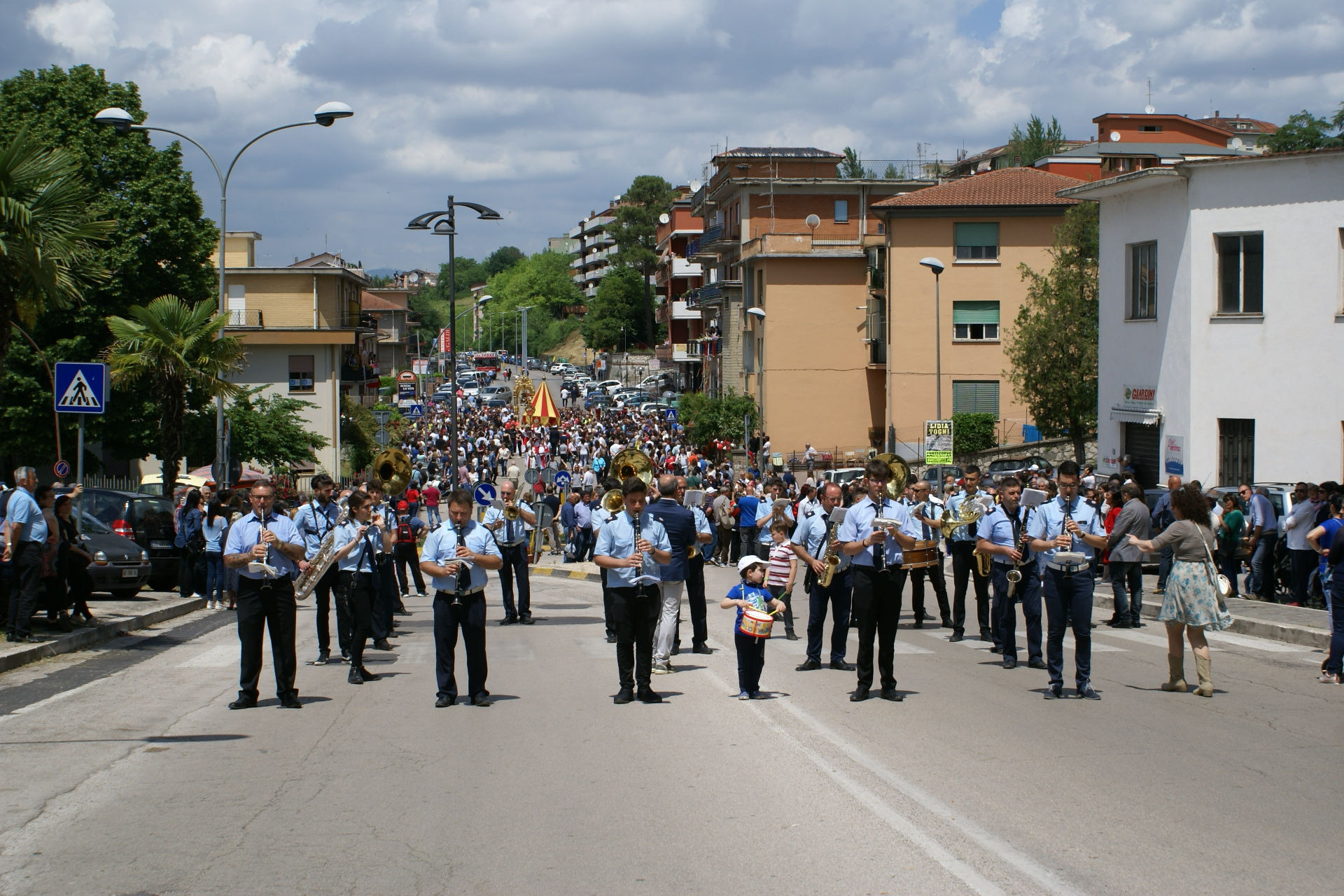 processione 211